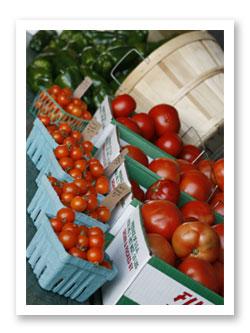 Fresh-picked tomatoes at Stover's Farms in Berrien Springs, Michigan