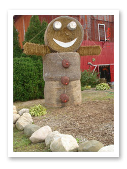 Strawman at Stover's Farms in Berrien Springs, Michigan