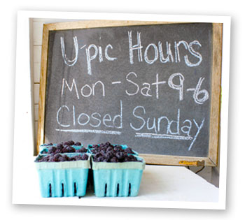 U-Pic Hours at Stover's Farms in Berrien Springs, MI